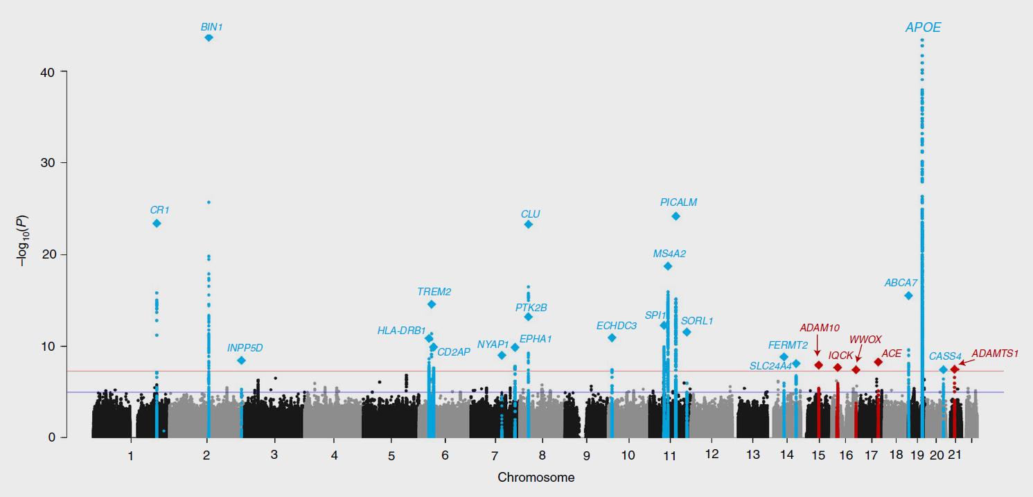 Manhattan plot of Alzheimer's genes