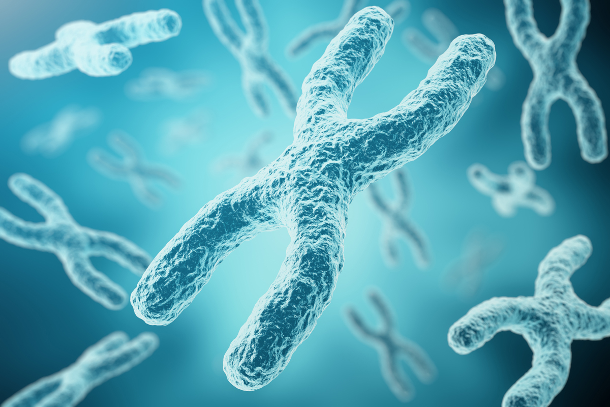 NIH researchers generate complete human X chromosome sequence