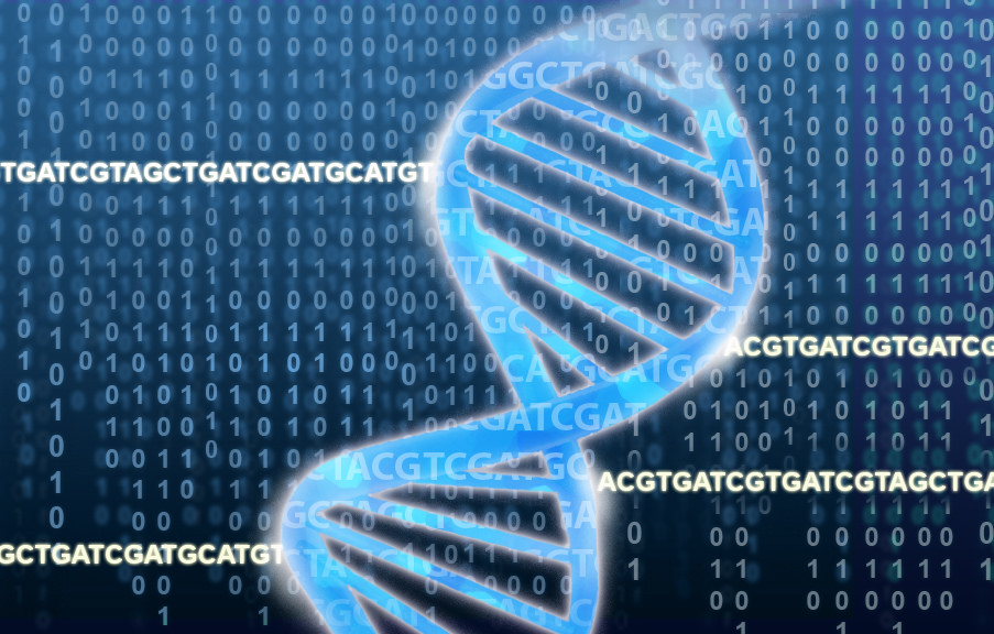 Genetic misdiagnoses of heart condition in black Americans   National  Institutes of Health (NIH)