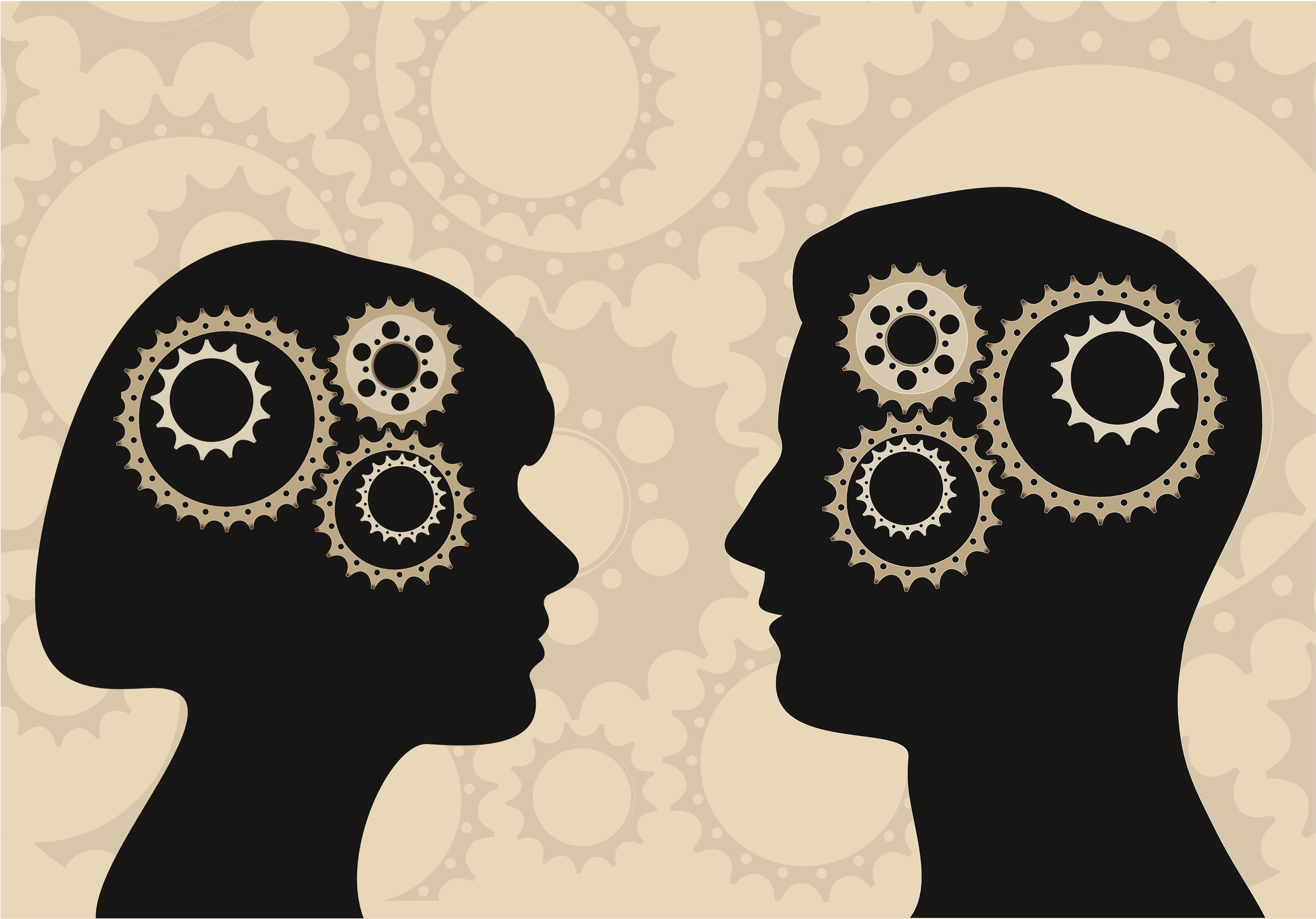 Differences between male and female brain area