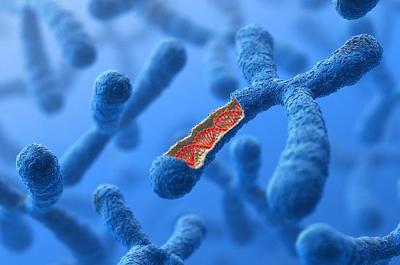 Illustration of chromosome and DNA