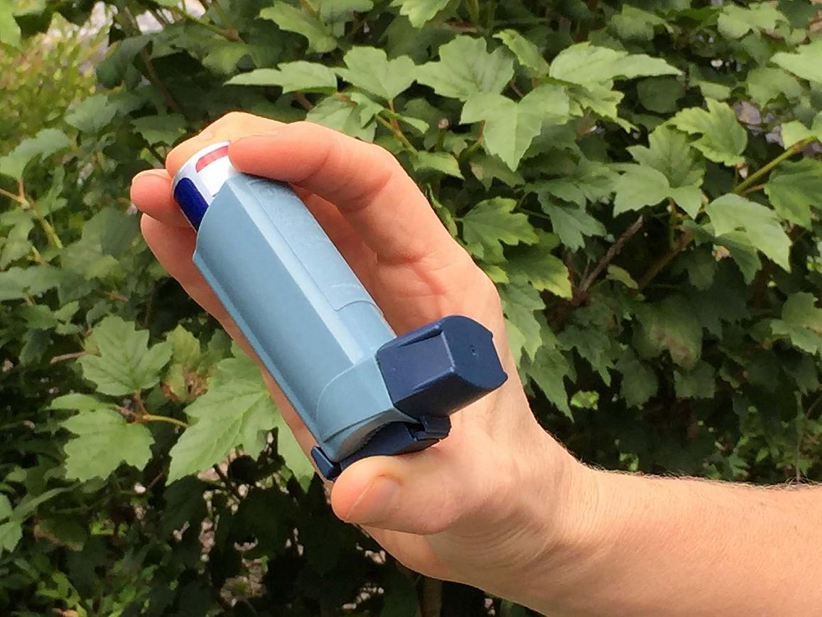 Image of a person holding an asthma inhaler.