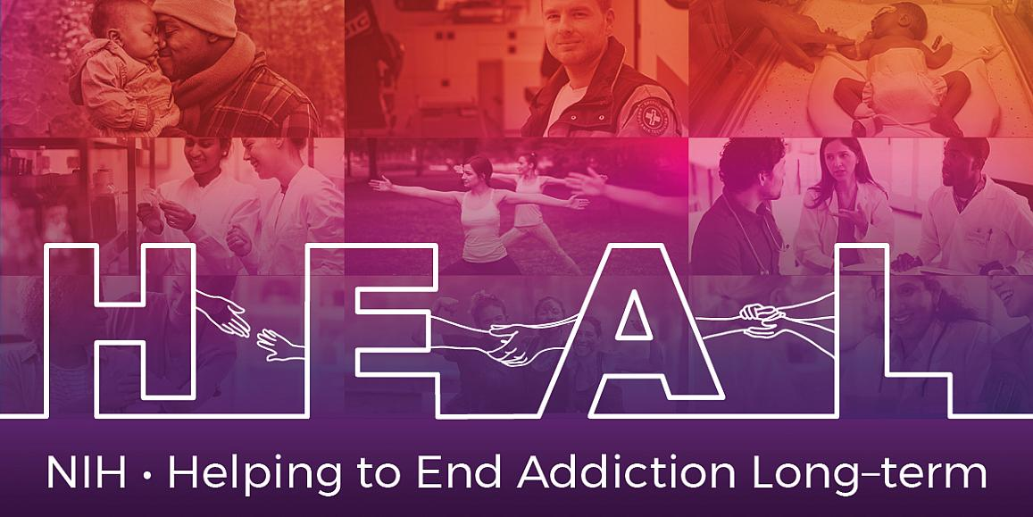 NIH funds study in four states to reduce opioid related deaths by 40 percent over three years