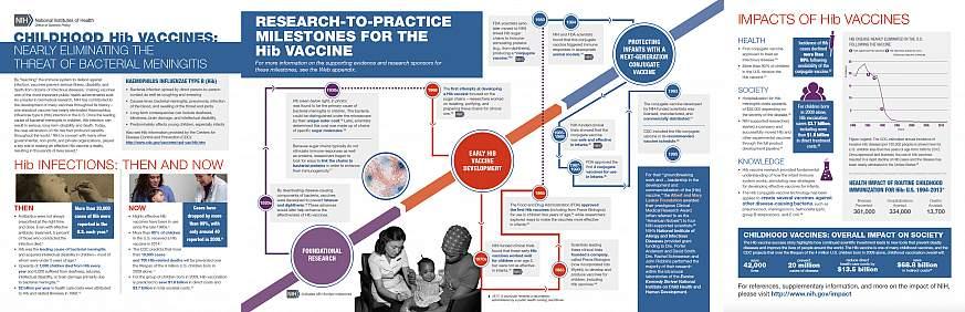 Screenshot of the Childhood Hib Vaccines Case Study.
