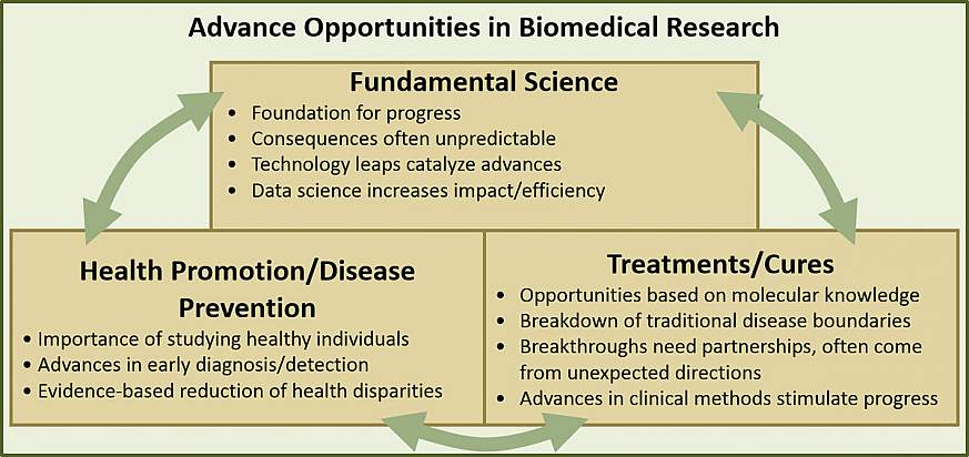 Advance Opportunities in Biomedical Research