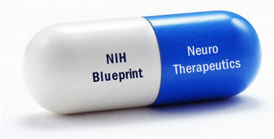 Pill with the words NIH Blueprint and Neuro-Therapeutics printed on it.