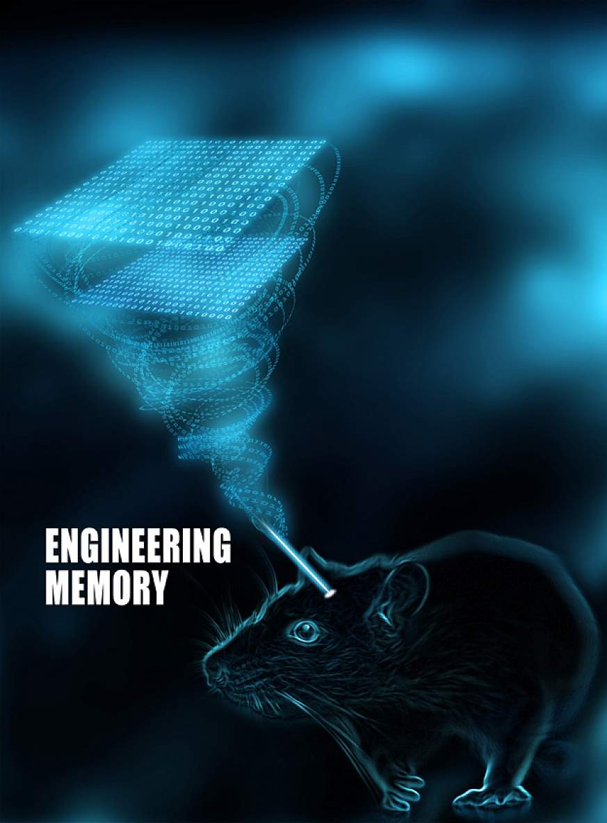 Illustration of a rat with data coming from its brain.