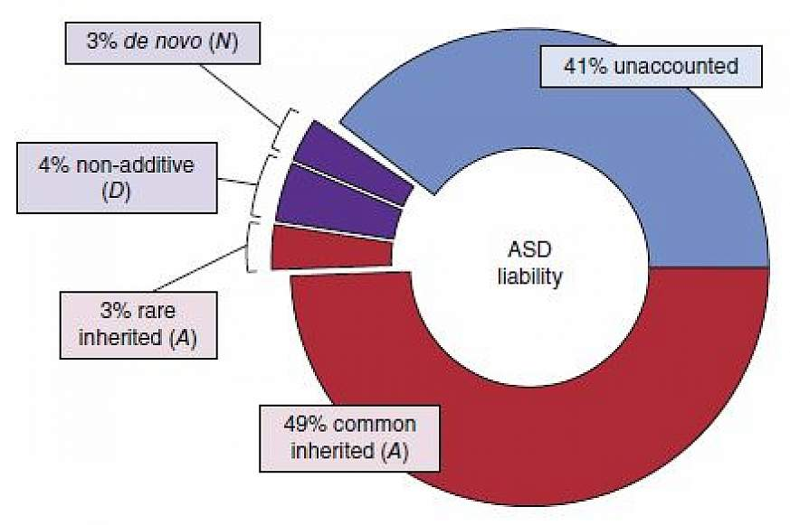 Chart showing Population-Based Autism Genetics and Environment Study