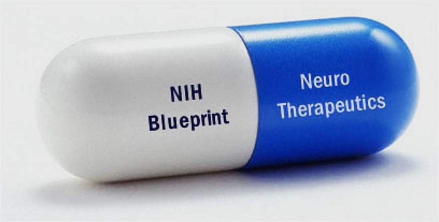 New nih funded memory drug moves into phase 1 clinical study logo of nihs blueprint neurotherapeutics program an experimental drug malvernweather Images