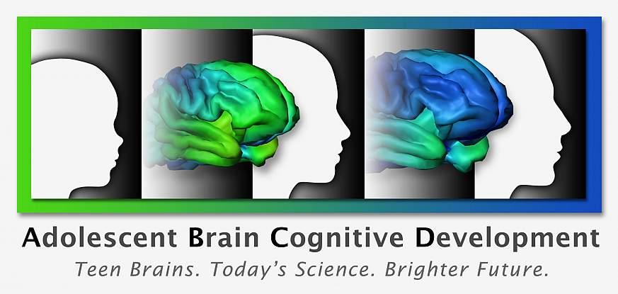 Recruitment Begins For Landmark Study >> Recruitment Begins For Landmark Study Of Adolescent Brain