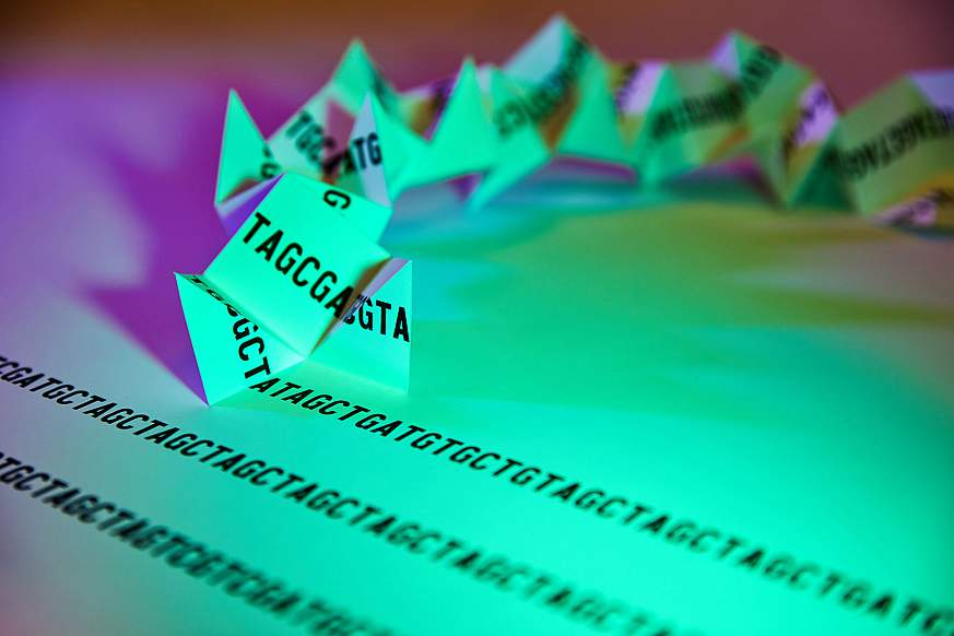 Image of a folding paper genome