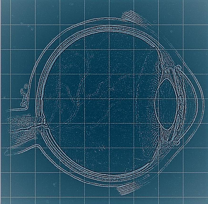 Illustration of an eye on a blueprint