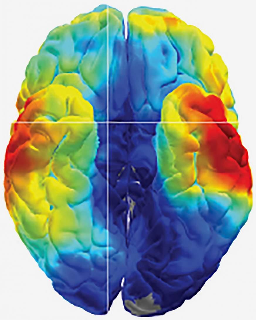 Brain's memory codes