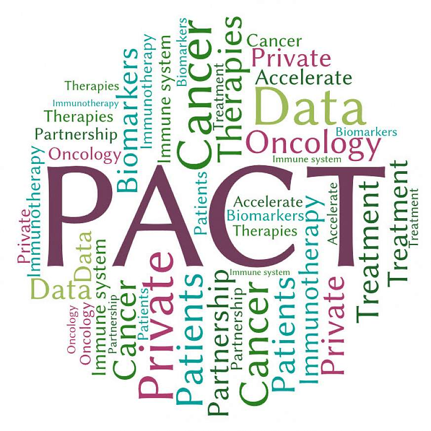 Partnership for Accelerating Cancer Therapies word cloud