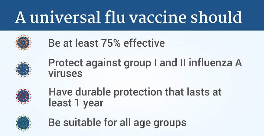 An effective universal flu vaccine must meet four criteria