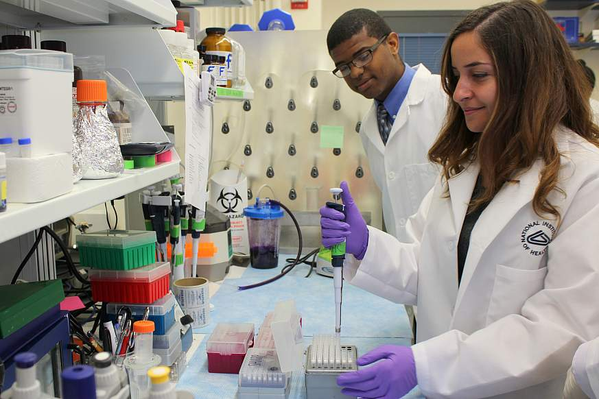 A image of student researchers at a lab bench