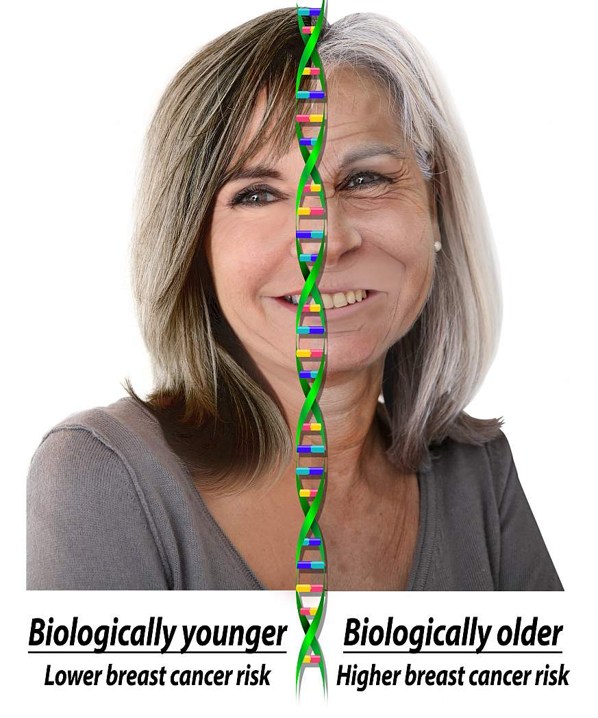 A graphical representation of biologic and chronologic age
