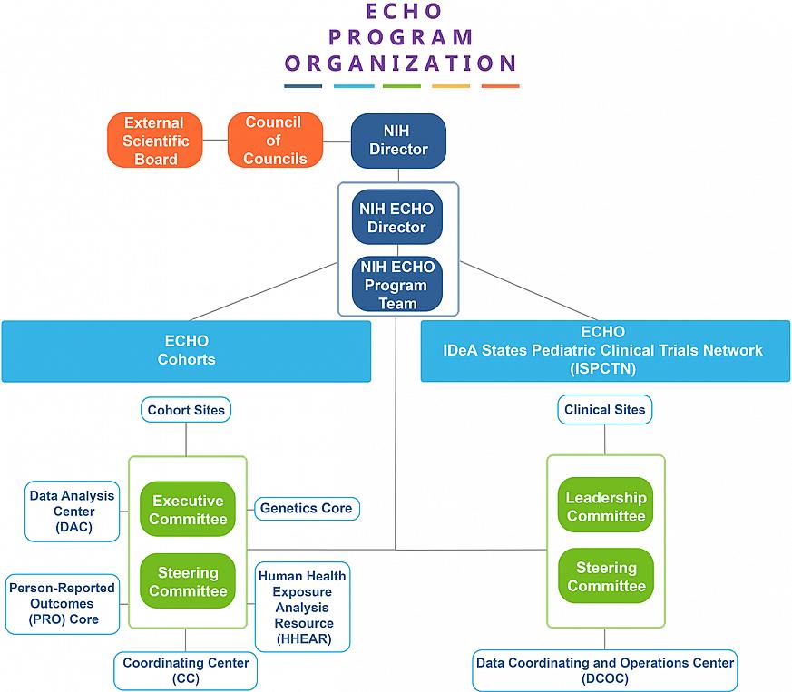 ECHO Program Organizational Chart