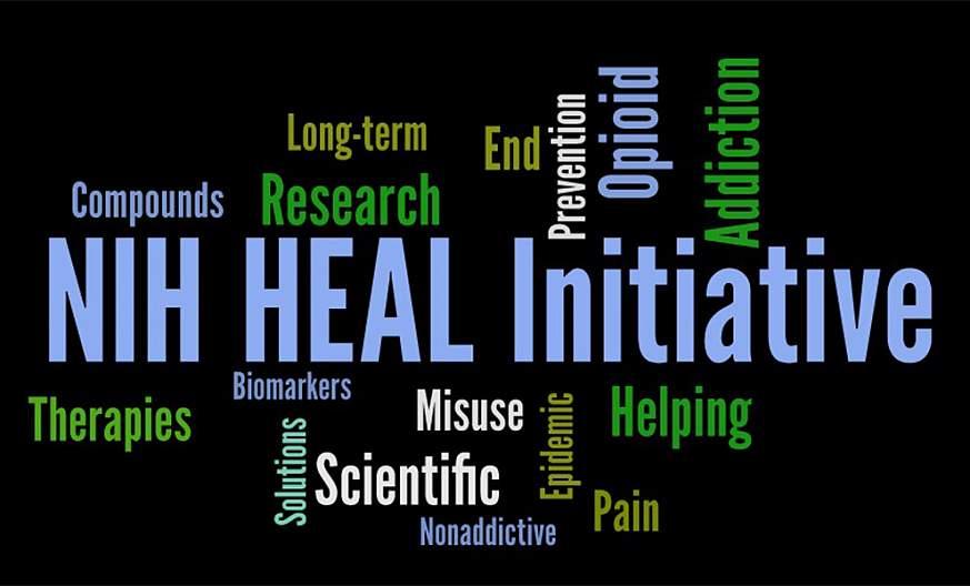 HEAL Initiative wordcloud