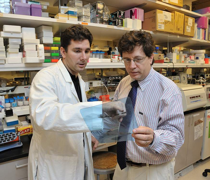 Richard Siegel, M.D., Ph.D., (right) NIAMS Clinical Director and Chief of the Autoimmunity Branch, discusses research results with postdoctoral fellow Martin Pelletier, Ph.D.