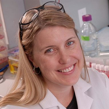 Sara L. Sawyer, Ph.D.
