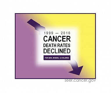 Overall cancer mortality continues to decline