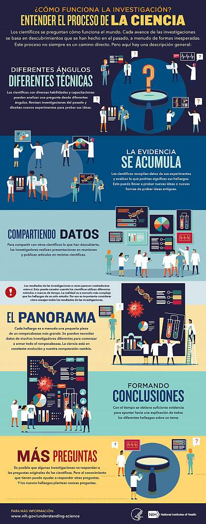 Expaling How Research Works Infographic en español