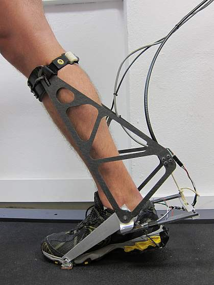 Image of the ankle interface