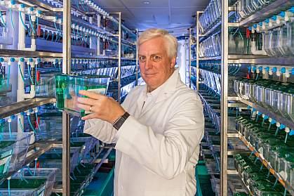 David R. Hyde, Ph.D.