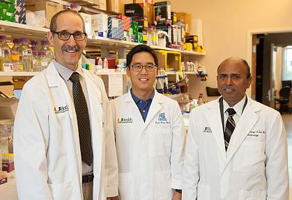 Vance Lemmon, Ph.D., Kevin Park, Ph.D., and Sanjoy Bhattacharya, Ph.D.