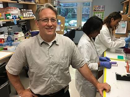 Edward M. Levine, Ph.D.