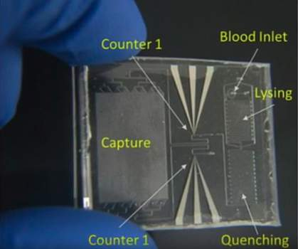 Image of the Point-of-Care Sepsis Stratification chip