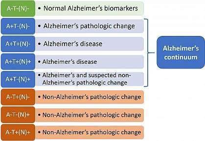 Table showing new Alzheimer's framework