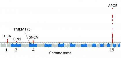 Illustration showing gene sequences