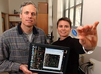 CU-Boulder Professors Robert Kuchta and Kathy Rowlen display a scanner and the Flu Chip