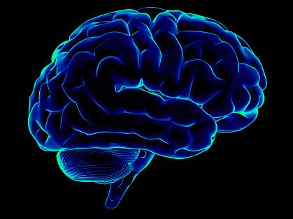 Side view of blue, stylized human brain on black background