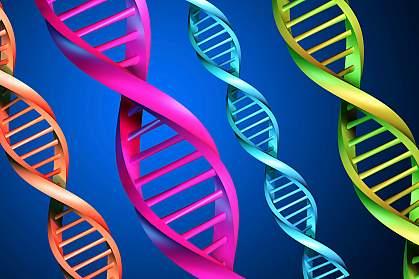 Illustration of several DNA strands