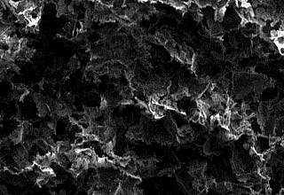 Photo of electron micrograph showing a sponge-like porous material