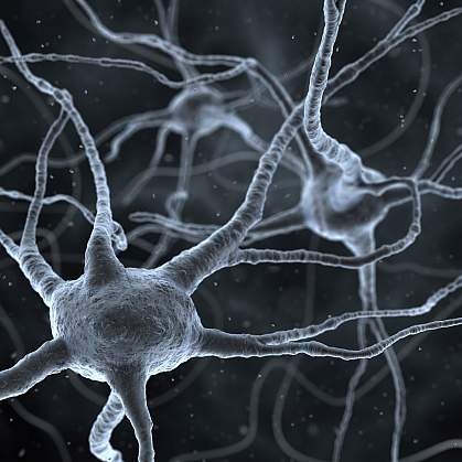 illustration of neurons