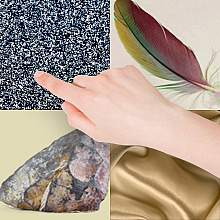Image of a hand surrounded by items of different textures