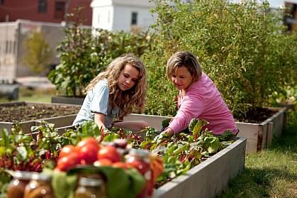 Women in a vegetable garden.