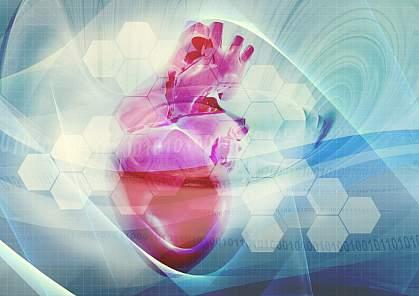 Stylized image of a heart.