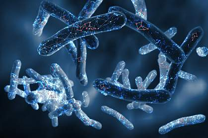 Illustration of Mycobacterium tuberculosis