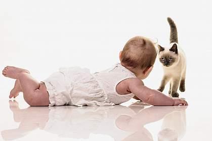 Baby on floor with kitten