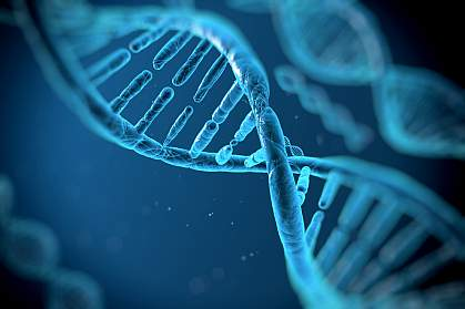 Illustration of RNA molecules