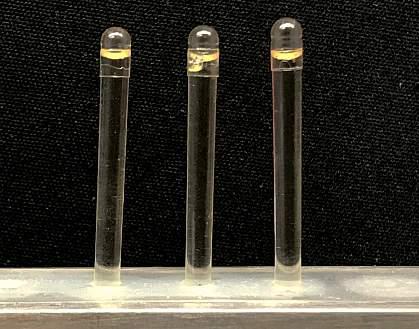 Enlarged photo of elongated capsules