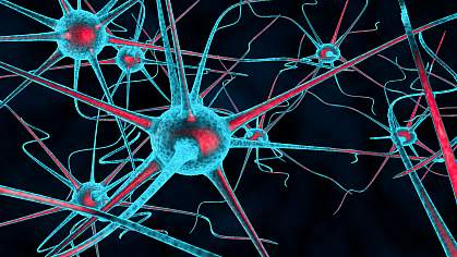 3D illustration of sensitized nerves