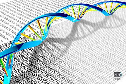 Illustration of DNA double helix on a print-out with the DNA letters A, T, C and G