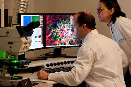Two scientists observe ocular tissue samples under a laser scanning microscope.