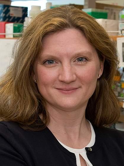 Beth Kozel, M.D., Ph.D.